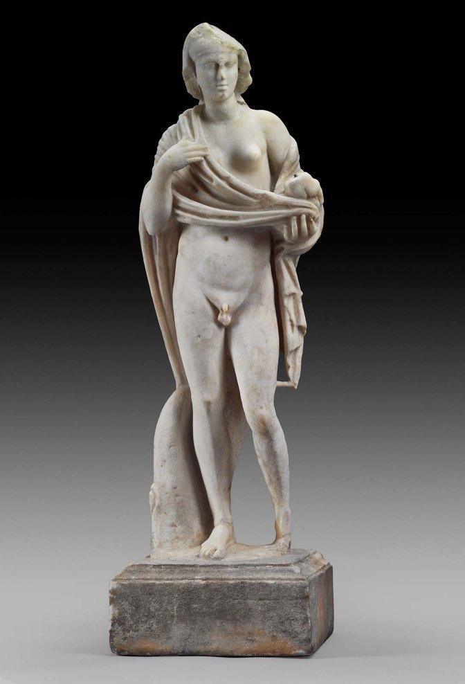 hermaphroditesc189410